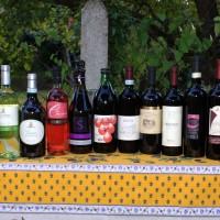 Die Weine der Vini e Gusto Sommerweinprobe